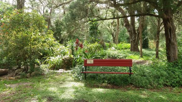Central_Florida_Portrait Locations_11