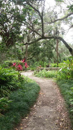 Central_Florida_Portrait Locations_17